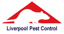 Liverpool Pest Control, professional pest control service for Liverpool, Merseyside and Cheshire. Wasp nest treatment or removal fixed price £35.00, contact us on  0151 321 0255 for more info.